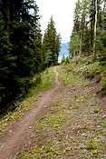 trail on Telluride mountain